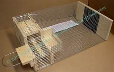 house sparrow trap plans sparrowtraps net