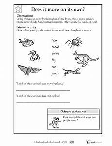 movements of animals worksheets for grade 1 14260 does it move on its own kindergarten phonics worksheets money math worksheets 2nd grade