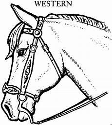 Ausmalbilder Pferde Western Pferd Mit Westernausruestung Ausmalbild Malvorlage Tiere