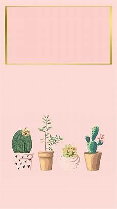 aesthetic cactus iphone wallpaper iphone wallpaper iphone background succulent cactus