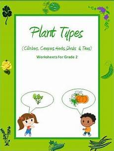 plant kingdom worksheets for grade 2 13758 plant types climbers creepers herbs by rituparna reddi teachers pay teachers