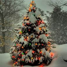 merry christmas tree wallpaper picturespool tree wallpapers happy christmas merry christmas 2013 wallpapers