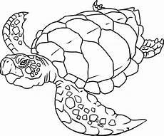 sea animals coloring pages easy 16965 sea animals coloring pages free printable 579640 171 coloring pages for free 2015