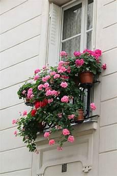 Comment Avoir Un Balcon Fleuri Id 233 Es En 50 Photos D 233 Co