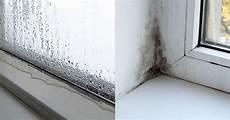wasser an den fenstern im winter ursachen f 252 r nasse fenster und schimmel im winter