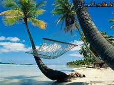 amaca sul mare sfondo gratis di amaca in riva per desktop smartphone