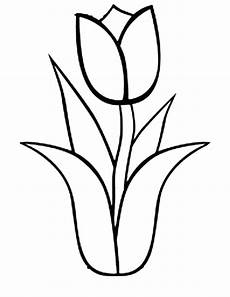 simple tulip drawing at getdrawings free