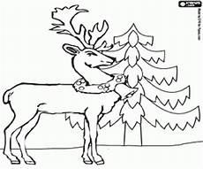 Malvorlagen Rentieren Ausmalbilder Weihnachten Rentieren Malvorlagen
