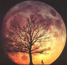 2012 Sternenlichter Mond Und Emotionen