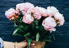 frasi con fiori frasi sui fiori le 25 pi 249 in inglese e italiano