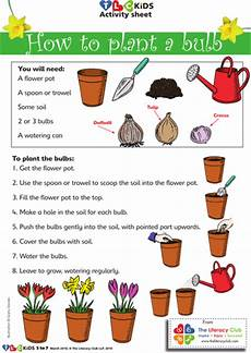 how to plant a bulb teaching resources