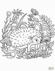 hedgehog coloring pages printable at getcolorings