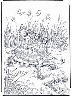 Ausmalbilder Elfen Erwachsene Elfes Et Tortue Coloriages Elfes