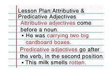 what are adjectives lesson turtle diary