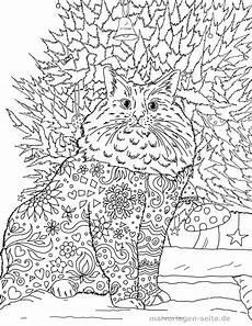 malvorlage erwachsene katze kostenlose ausmalbilder
