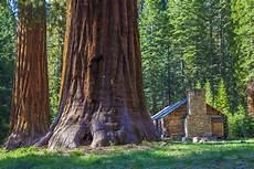 eqoi7a sequoia hikes