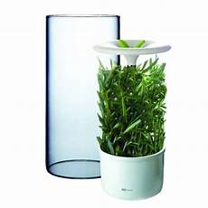 Kitchen Craft Herb Preserver by Fresh Herb Keeper Product Design Herbs Spice Jars