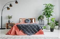 Pflanzen Im Schlafzimmer Diese 7 Gr 252 Nen Sch 246 Nheiten
