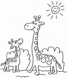 Malvorlagen Kostenlos Giraffe Giraffe Malvorlagen Kostenlos Zum Ausdrucken
