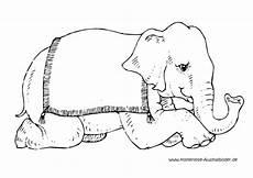 Ausmalbilder Zirkus Elefant Ausmalbilder Zirkuselefant Tiere Zum Ausmalen