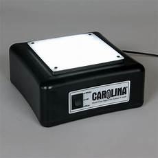 carolina 174 led light box carolina
