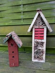 Insekten Im Garten Fuchsien