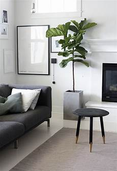 Living Room Home Decor Ideas With Plants by 20 Modern Indoor Garden With Scandinavian Style Home
