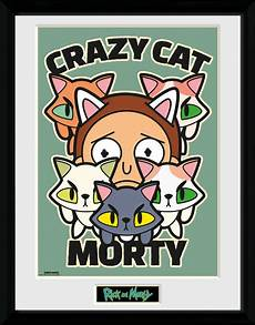 Gerahmte Bilder Kaufen - rick and morty cat morty gerahmte poster bilder