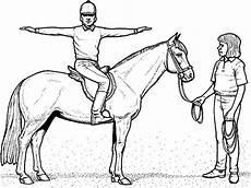 ausmalbilder pferde ausmalen ausmalbilder pferde mit reiterin ausmalbilder pferde