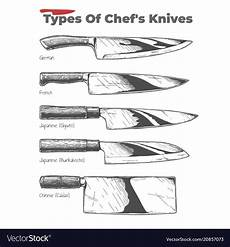 types of kitchen knives royalty free vector image