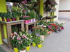 livraison fleurs nancy fleuriste nancy livraison de fleurs toutes occasions