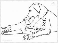 Hunde Ausmalbilder Labrador Hunde Bilder Zum Ausmalen