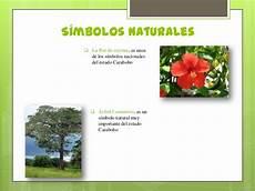 flor tipica del estado falcon estado carabobo