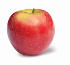 apple varieties ny apple sales