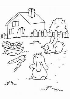 kostenlose malvorlage kaninchen kaninchen und m 246 hren zum