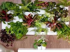 Blumenkästen Für Die Wand - ungew 246 hnliche moderne blumenkasten