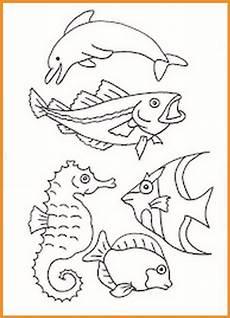 Ausmalbilder Fische Meerestiere Ausmalbilder Fische Und Meerestiere Rooms Project