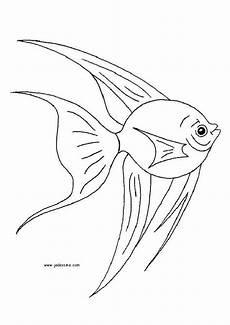 Malvorlagen Unterwasser Tiere Pdf Bildergebnis F 252 R Wrack Unter Wasser Ausmalbilder