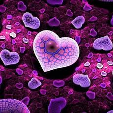 Cinta Hati Gambar Animasi For Android Apk