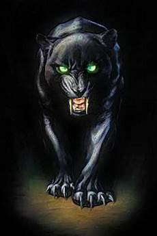 Gambar Harimau Macan Nawasanga Karakter Cenderung Agresif