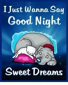 i just wanna say good sweet dreams meme sizzle