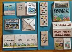 iman s home school coral reefs lapbook
