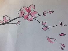 fleur de cerisier dessin espace membre gt galerie de praslin