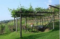 Pergola Mit Wein Green Garden Inspiration