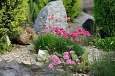 Blumenbeet Gestalten Mit Steinen