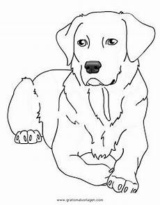 Hunde Ausmalbilder Labrador Labrador 2 Gratis Malvorlage In Hunde Tiere Ausmalen