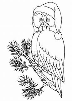 Ausmalbilder Eule Mit Buch Ausmalbild Eule Mit Weihnachtsm 252 Tze Ausmalbilder Eulen
