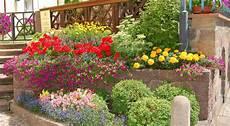 terrazzo fiorito tutto l anno bordura aiuola o terrazzo il piacere giardinaggio