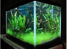 aquarium tank and stand combo
