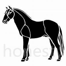 Gambar Animasi Kuda Kantor Meme